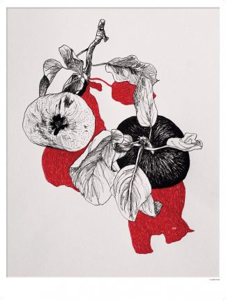 Æbler med rød skygge_30x40